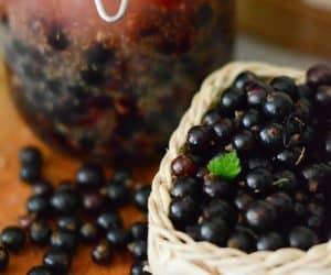 Lichior de coacaze negre cu scortisoara si anason