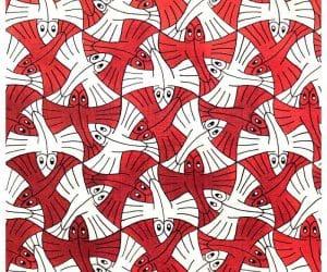 Galerie Iluzii optice - Pestele zburator