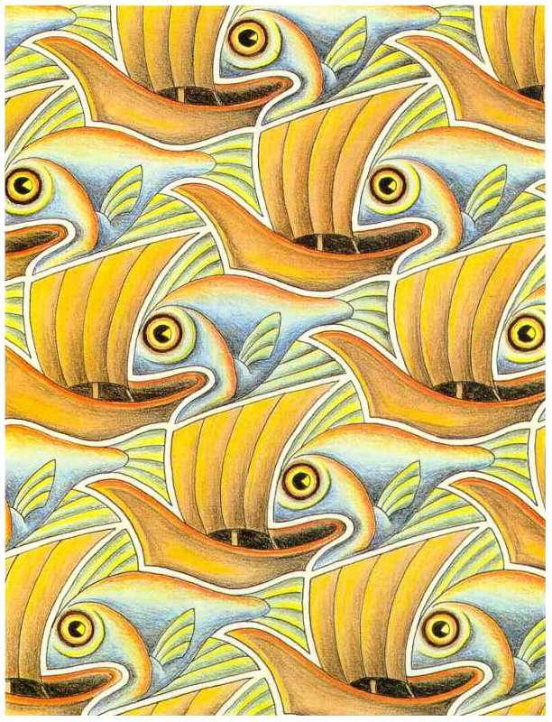 Galerie Iluzii optice - pesti si broaste