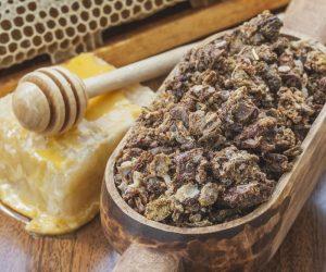 Imaginea thumbnail despre Propolisul crud – un antibiotic natural! Afla cum se prepara si ce beneficii are!