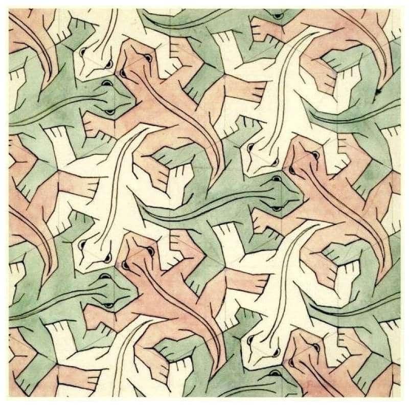 Galerie Iluzii optice - Reptile