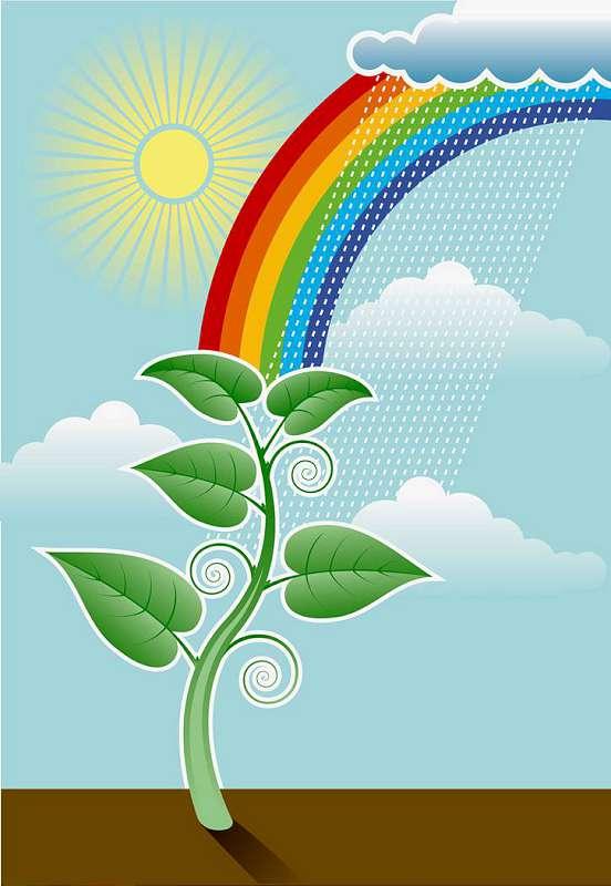Imaginea thumbnail despre Plantele verzi, depozit de energie, acumulatori vii [video]