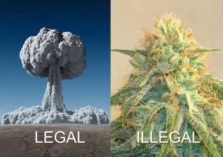 Legal si ilegal