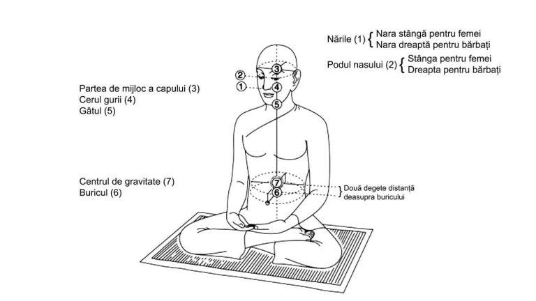 Practica taoista - Meditatia Poarta celesta