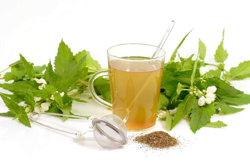 medicina naturista tratamente medicinale pentru uz intern