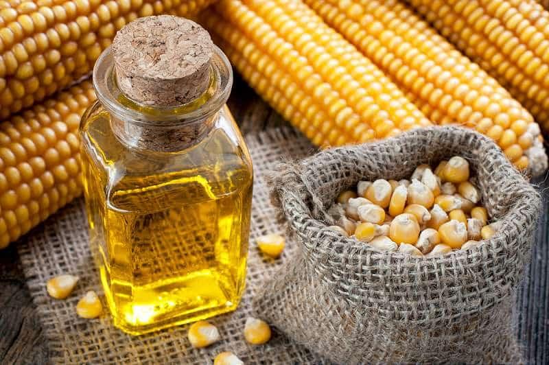 Imaginea thumbnail despre Cum se extrage uleiul de porumb acasa – pasii de lucru