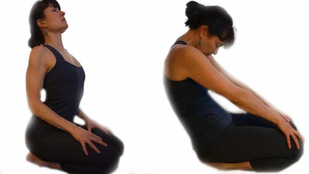 Exercitii yoga pozitia pisicii sezute