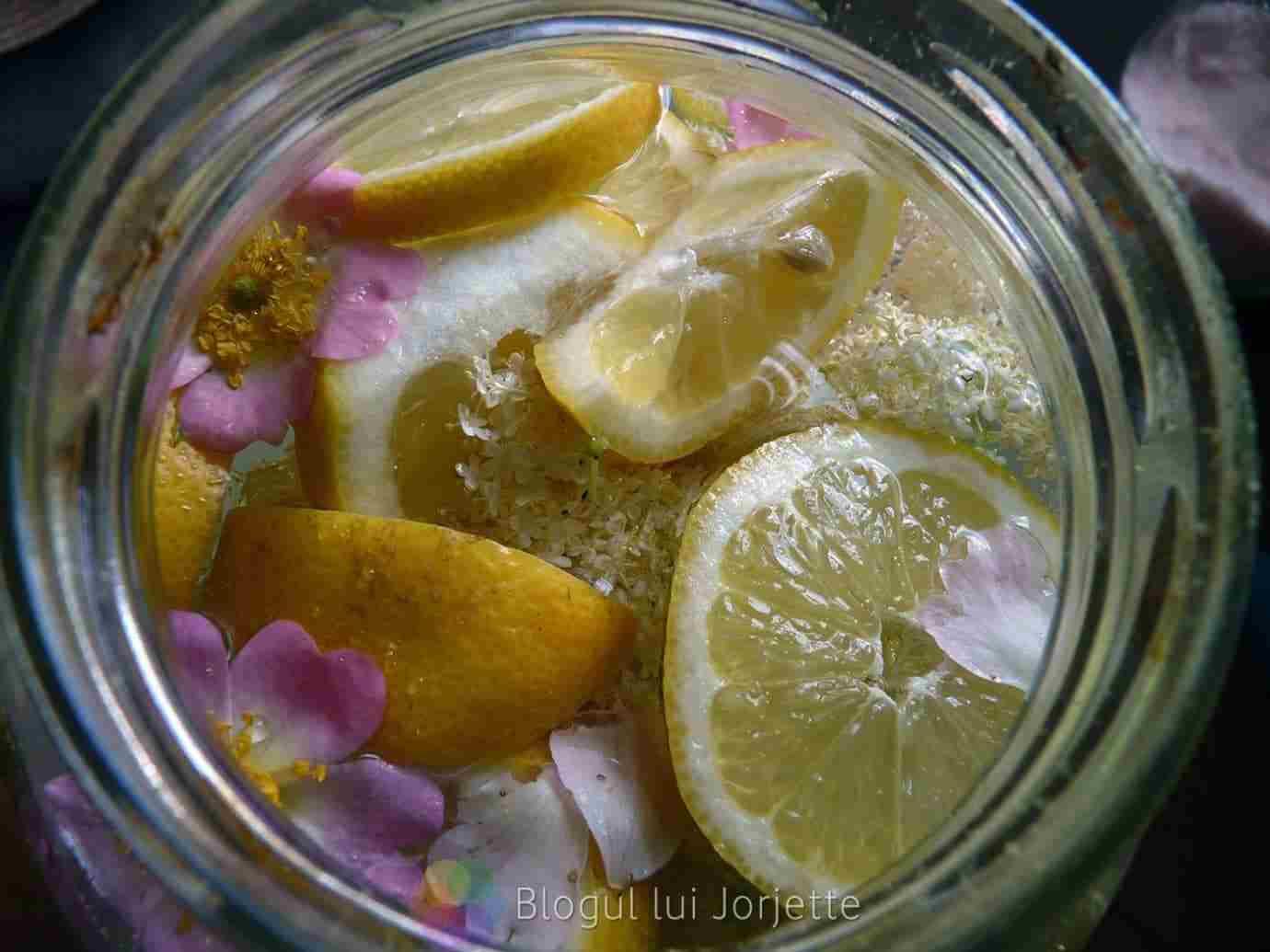 Imaginea thumbnail despre Cum se prepara socata sau sucul de soc – Importanța cultivarii socului