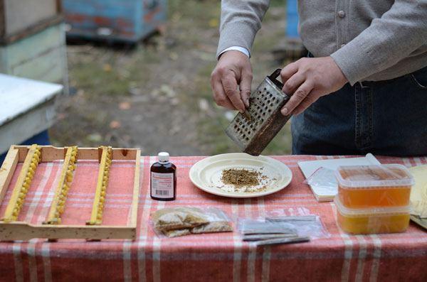 cum se prepara tinctura de propolis acasa