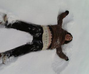 Fotografii de iarna - Un fluturas rahitic