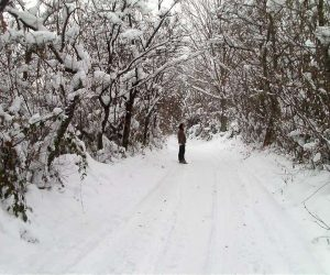 Fotografii de iarna marca Blogul Lui Jorjette 4