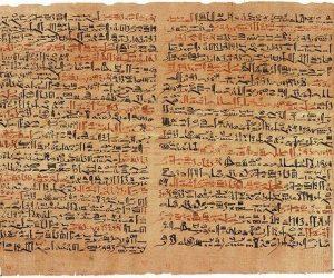 Fragment despre plante medicinale din Papirus Erbes