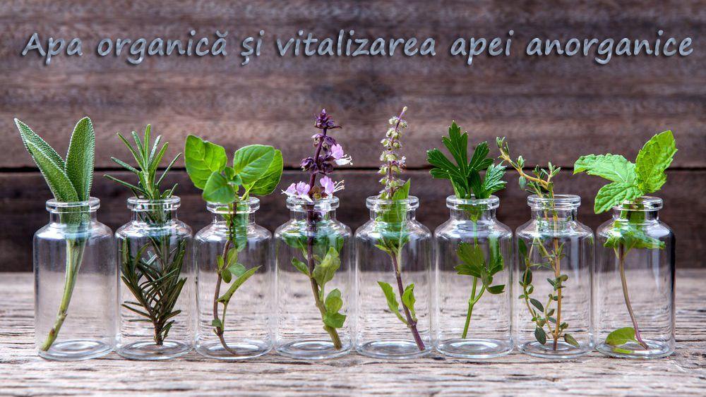 Apa organica apa vitalizata