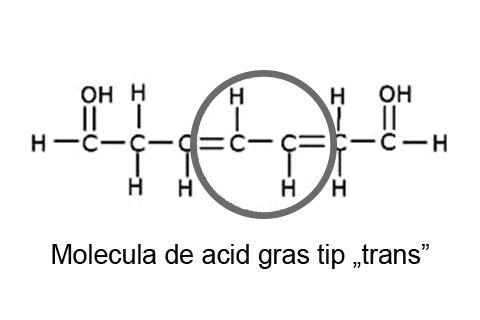 Molecula de acid gras de tip trans