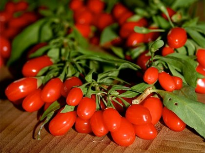 fructele goji