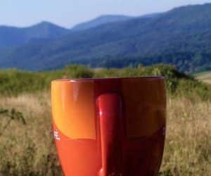 loc de baut cafeaua