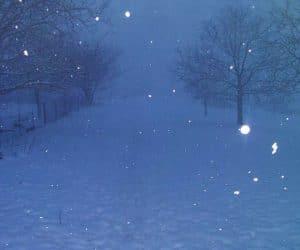 iarna la Vidra