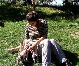 Viata la tara - imagini cu animale și momente 4