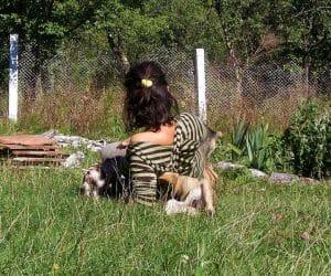 Pe iarba cu prietenii nostri