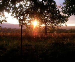 Apus de soare la Vidra - mai devreme