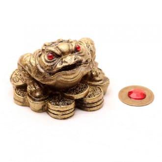 broasca feng shui care aduce bani zi de zi