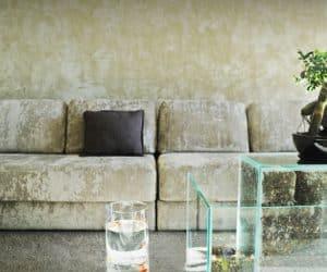 plante in acvariu - design modern