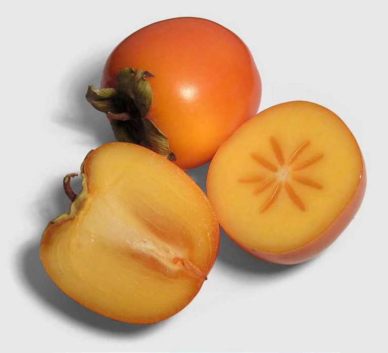 kaki fruct sau curmal japonez beneficii