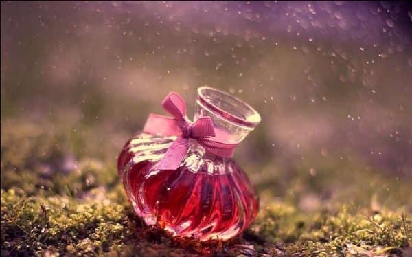 licori de dragoste si farmece din plante afrodisiace