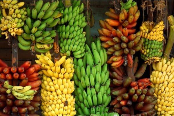 soiuri de banane