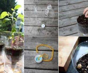 DIY ghiveci din sticla cu sistem de auto-udare