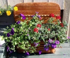 DIY jardiniera pentru flori facuta acasa
