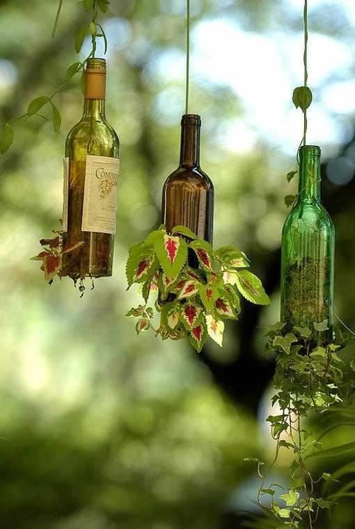 DIY sticle folosite ca ghivece de flori