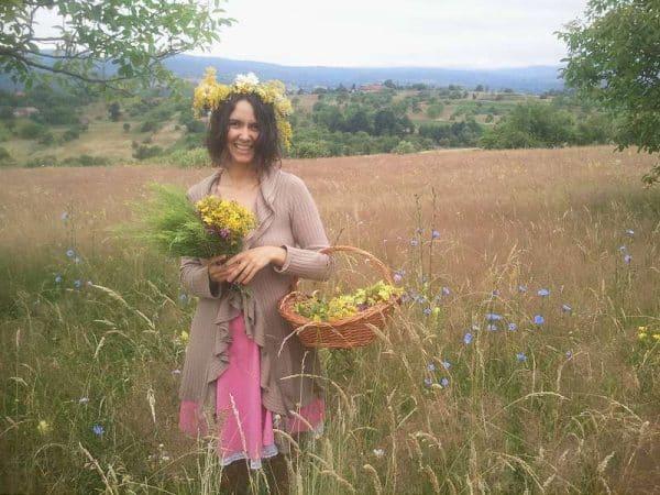 te invit sa culegi plante medicinale - coronita de sanziene si flori medicinale