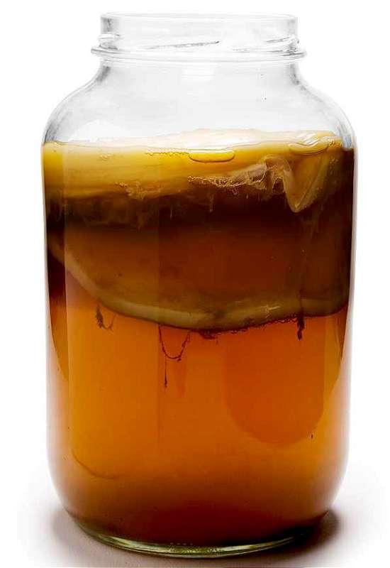 consuma ceai Kombucha
