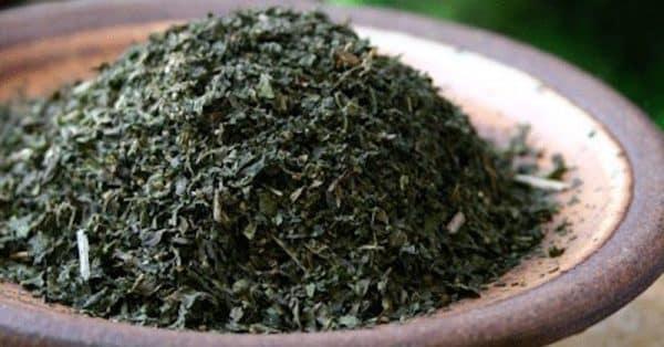 ceai de urzica anticancer