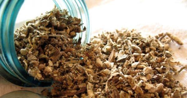 frunze de lumanarica pentru cancer pulmonar