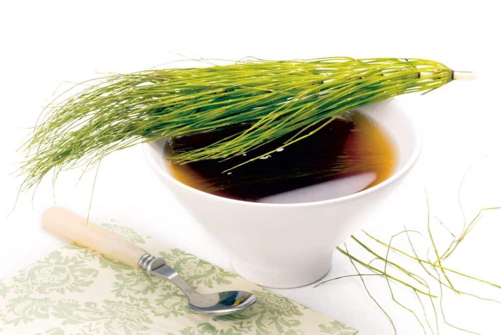 ceai de coada calului pentru anemii si hemoragii - proprietati si beneficii