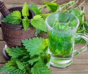 Ceaiul de urzici preparare si beneficii
