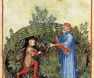 Ruta prezentata in cartea medievala despre mentinerea sanatatii: Tacuinum Sanitatis