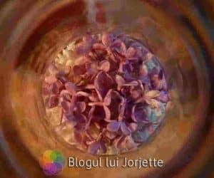 Flori de liliac comestibile