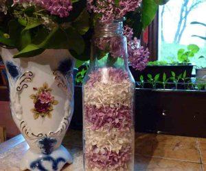 Flori de liliac in 2 culori de pus cu miere