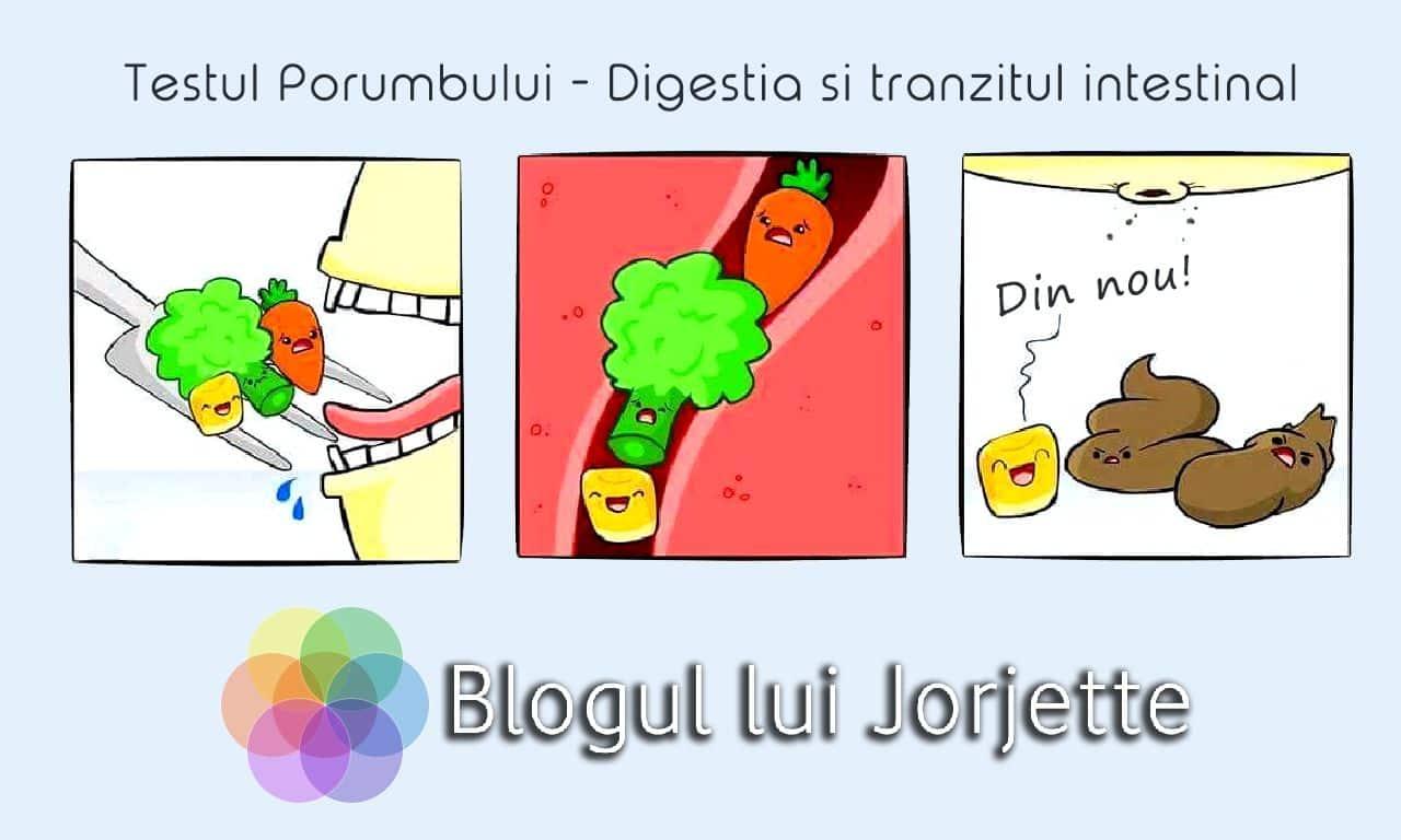 Testul Porumbului - Tranzitul intestinal si Digestia