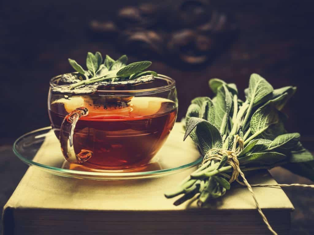 Ceaiul de salvie beneficii si utilizari