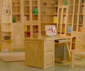 Birou si biblioteca cu usi cu sticla rafturi si sertare din lemn de pin