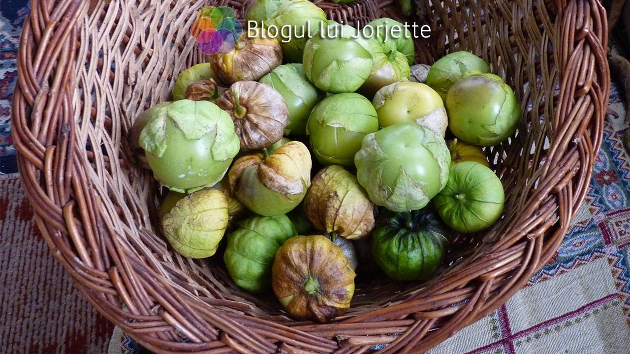 Physalis philadelphica sau tomatillo verde si mov