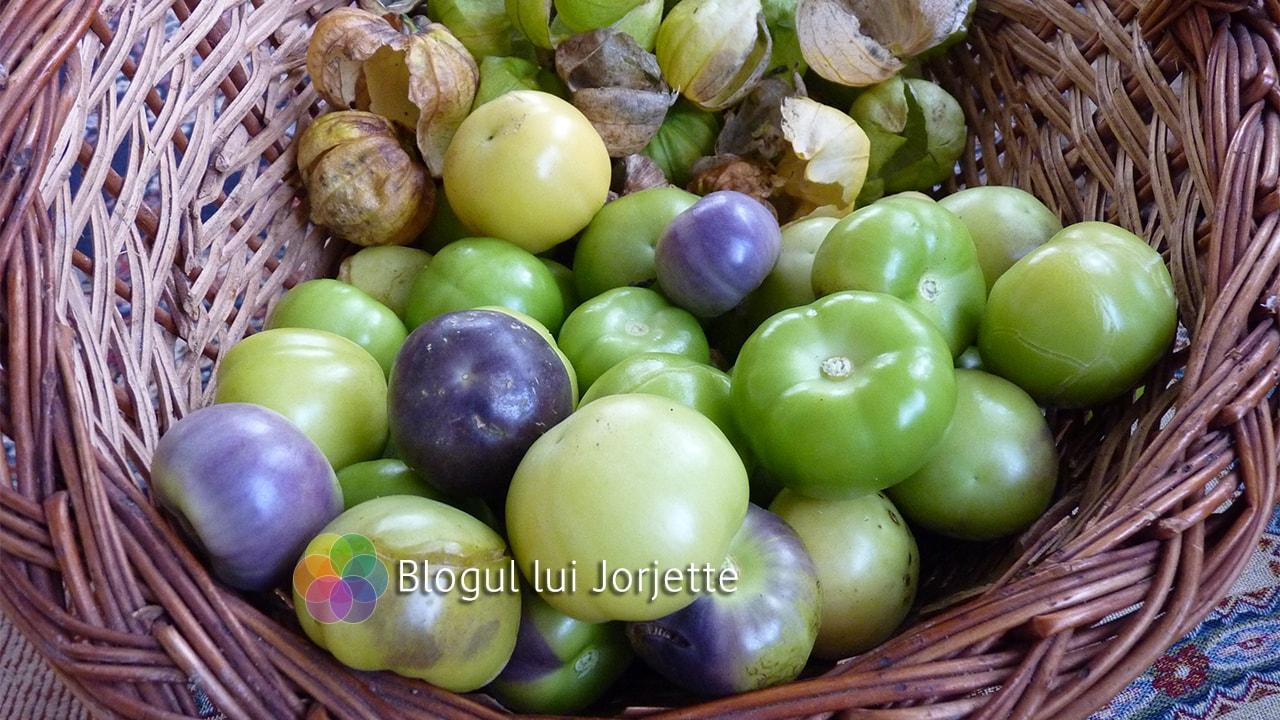 Tomatiilo verde si mov