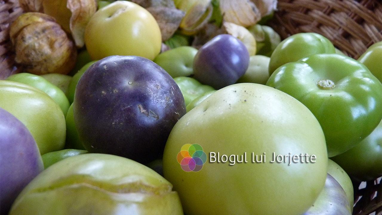 Imaginea thumbnail despre Tomatillo ~ Tomata verde de Mexic ~ proprietati, utilizari + 3 retete
