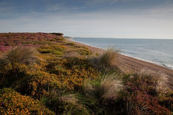 Dunwich, insula suffolk