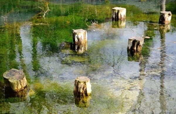 viziteaza Silent pool