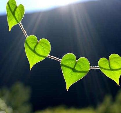 Dezbraca te de prejudecati si imbraca te in iubire